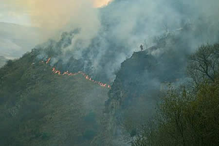 Suspenden clases en municipio de Tarija y San Lorenzo por incendio en la Cordillera de Sama