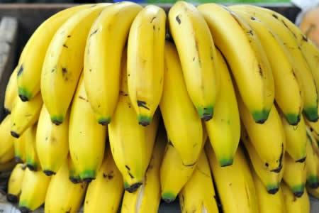 Prevén alza de 15% en exportación de banano y abrir mercados en Brasil, Uruguay y Rusia