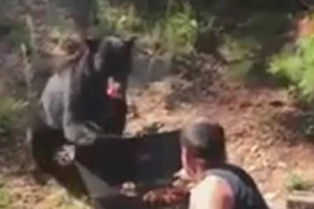 Dos hombres se enfrentan a un oso que les intenta robar su barbacoa