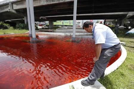 Tiñen de rojo agua de fuente para protestar por contaminación en Costa Rica