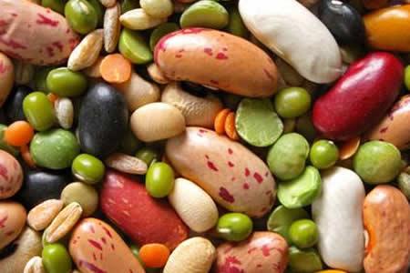 Proteínas de las leguminosas, eficaces en tumores tempranos, según experta