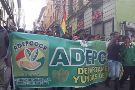 Cocaleros retoman marchas y acusan al gobierno de traición