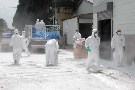 Más de 29.000 afectados por un brote de fiebre aftosa humana en Japón