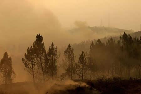 Bomberos controlan las llamas en Góis, último foco del incendio de Portugal