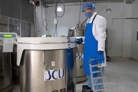Las células madre, una opción para tratar más de 80 enfermedades