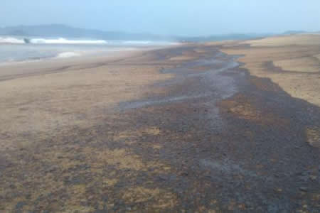 Pescadores denuncian que derrame de crudo daña la pesca en el sur de México