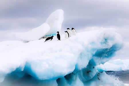 Australia reafirma compromiso con plan para proteger la Antártida Oriental