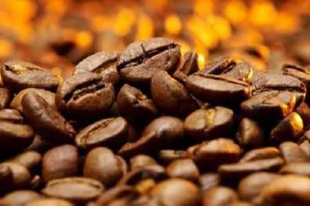 Bolivia trabaja para vender café, quinua y carne a China y Rusia