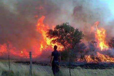 Reportan incendio de magnitud de área protegida en el municipio Bella Vista