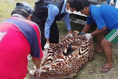 Reportan que embarrancamiento dejó tres muertos en ruta La Paz-Caranavi