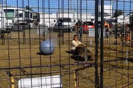 Un tigre de circo ataca a su domadora frente a un grupo de escolares