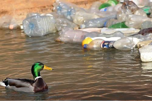 Científicos proponen crear más empleo limpiando de basura el Mediterráneo