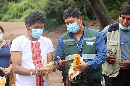El INIAF socializa nuevas tecnologías para la producción de maíz y trigo