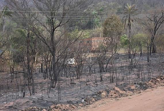 Incendios forestales son transfronterizos y están afectando a Bolivia, Paraguay y Brasil