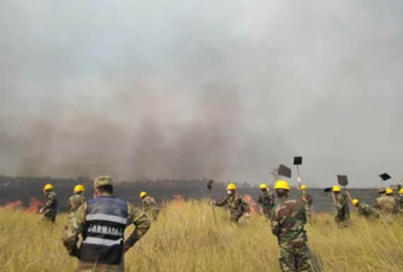 """Morales agradece labor """"noble y sacrificada"""" de veterinarios y bomberos en incendio en la Chiquitania"""