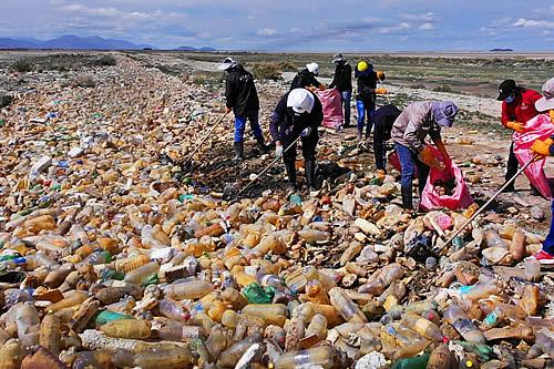 Oruro: Empacar reciclará 15 toneladas de plásticos que se recolectan de las riberas del lago Uru Uru
