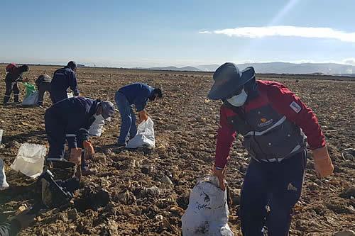 Cartonbol y el Sindicato de Transporte Pesado Pagador Oruro se suman a la limpieza del lago Uru Uru