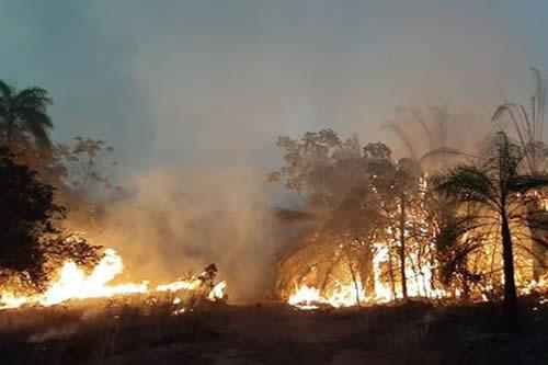 Policía convoca a declarar a ocho personas por incendios en la Chiquitania