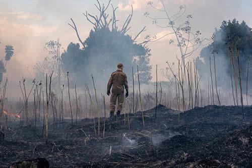 La Amazonia en llamas y el azote del huracán Dorian: ¿de verdad estamos ante una catástrofe climática?