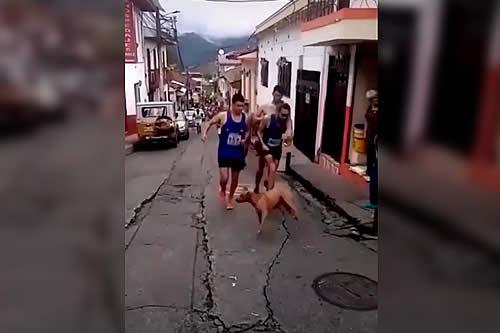 Un atleta colombiano patea a un perro en plena carrera y el repudio provoca que pierda a su patrocinador