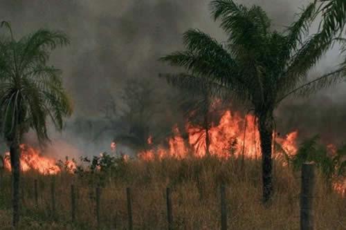 Cabrera: Dos helicópteros de Francia se sumarán al trabajo de mitigación de incendios en la Chiquitania