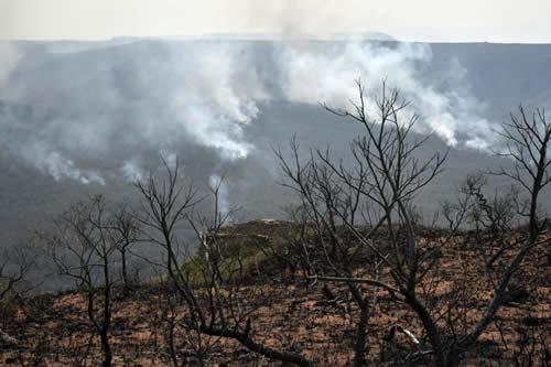 Canadá, Francia y la UE expresan su interés en cooperar en el plan postincendio de la Chiquitania