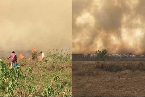 Beni se declara en alerta roja por la sequía e incendios