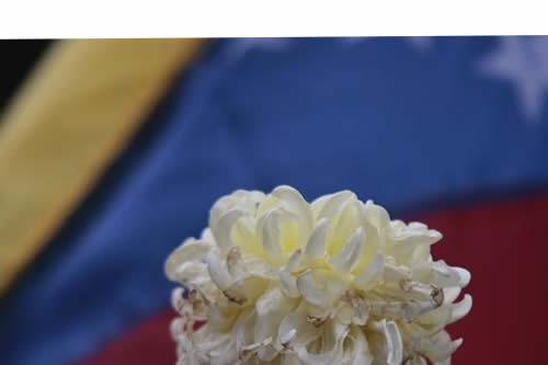España urge a retomar el diálogo en Venezuela