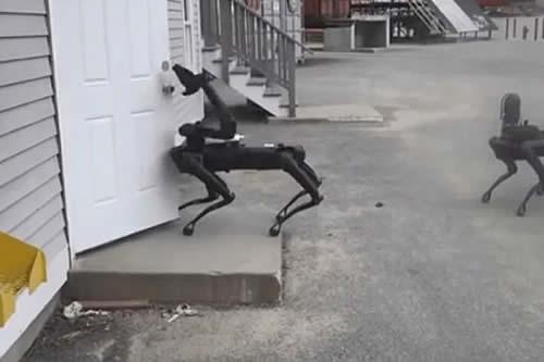 El perro robótico de Boston Dynamics trabaja ahora para la Policía