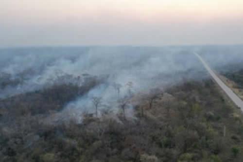 Gobierno dispuso $us 200 millones para incendios en la Chiquitania y anuncia que asumirá la reforestación
