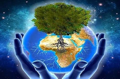 Avanza socialización del proyecto de Ley de la Defensoría de la Madre Tierra