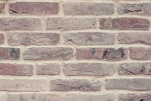 Un hombre coloca un 'muro' de excremento luego de una disputa con su vecino