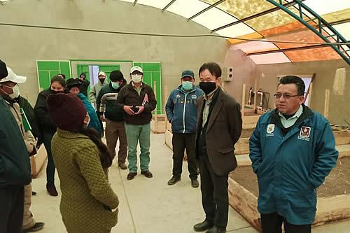 Gobierno implementa acciones para potenciar la producción de papa en Chuquisaca