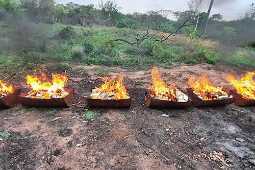 Incineran más de 246 kilos de droga secuestrada en tres pistas clandestinas ubicadas en Beni y Santa Cruz