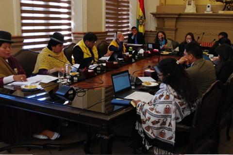 Concejo pide al GAMLP activarse contra femicidios