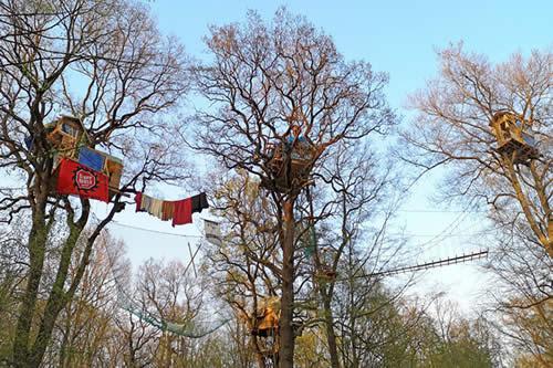 Vivir en los árboles para luchar contra el sistema: La 'batalla' de los activistas alemanes