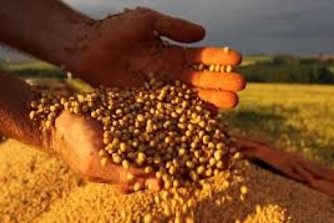 Empresarios destacan predisposición del Gobierno para dialogar con el sector soyero