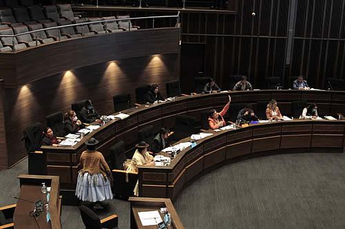 Senado sanciona proyecto de Ley de Estadísticas Oficiales del Estado Plurinacional de Bolivia