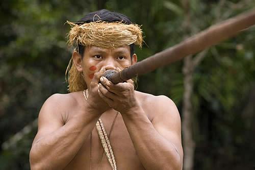 Pueblos indígenas hicieron uso sostenible de las selvas amazónicas durante 5.000 años