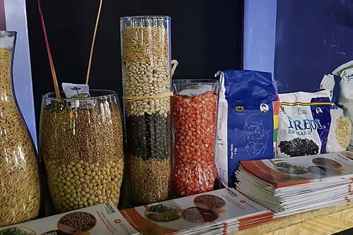 Empresa de producción de semillas proyecta generar Bs 38 millones este año