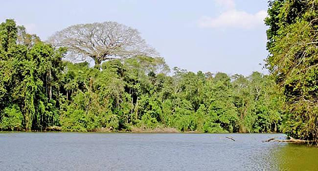 Territorio indígena parque nacional Isiboro Sécure